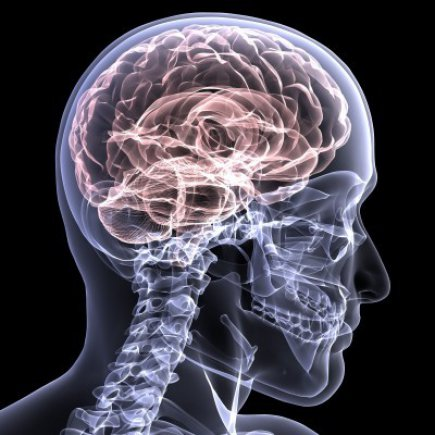 Accidents that Cause Traumatic Brain Injuries