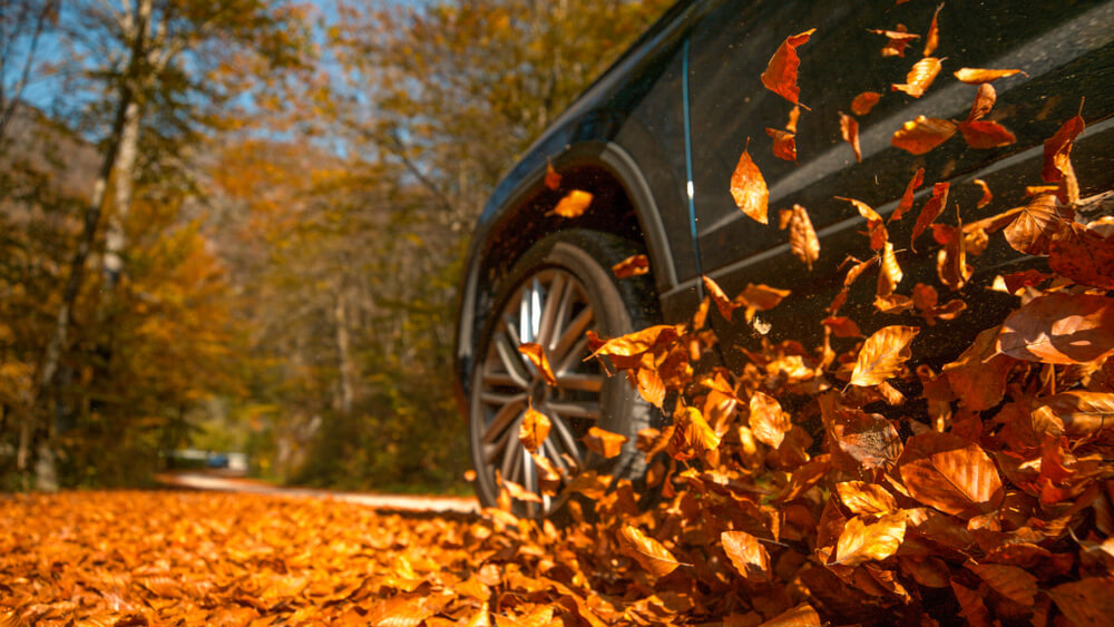 The Dangers of Driving in the Fall Season